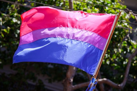 800px-Bisexual_flag